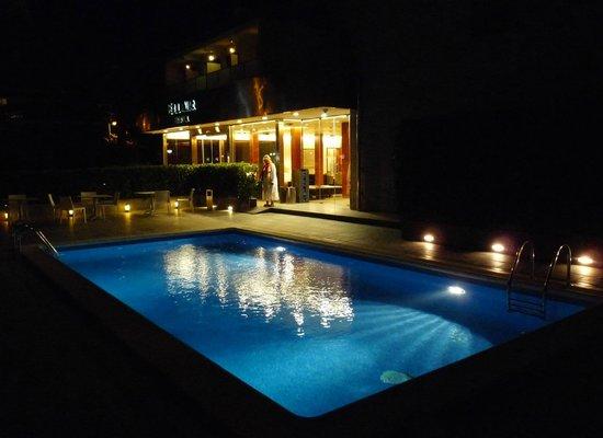 Bel Air Hotel : Pool 2