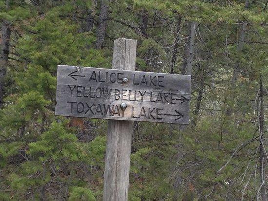 Smiley Creek Lodge: Hiking towards Alice Lake