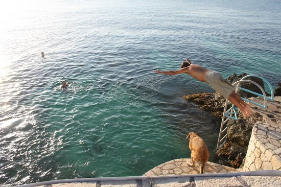 The Spa Retreat Boutique Hotel: a dive from the cliffs with dog Rosa about to follow us