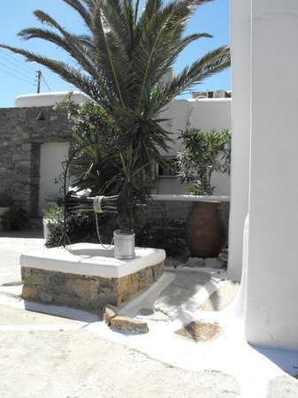 A Hotel  Mykonos: giardino