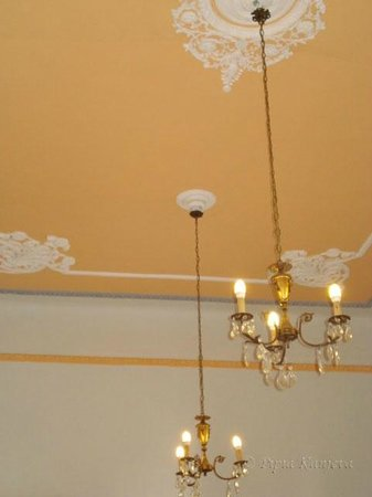 Tinion Hotel: The ceiling of the dining saloon