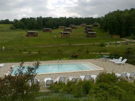 Domaine d'Escapa: piscine