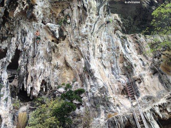 تونساي باي ريزورت: Closer view of climbers on the amazing limestone structure.