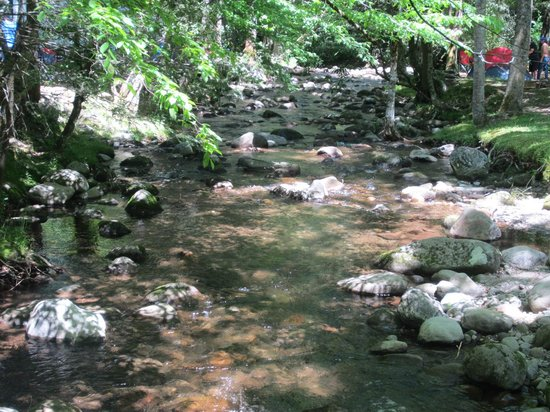 Imagination Mountain Camp-Resort: creek that runs along the campground...beautiful!
