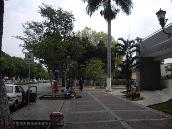 Hotel El Conquistador: La avenida amplia y arbolada.