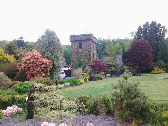 Mills Inn: lovely garden to walk around and sit in the sun