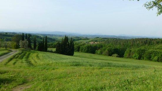 Villa Ostignano : View from the Living Room