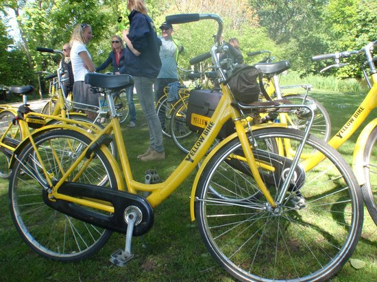 Yellow Bike Tours & Rental : in Vondel Park on our stop