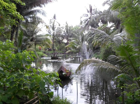 Tasik Ria Resort Manado: Hotel Gardens