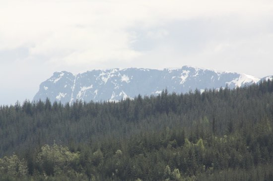 Inverskilavulin : Close up of Ben Nevis from the front window