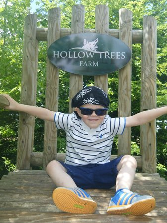 Hollow Trees Farm Shop: sitting on very large chair