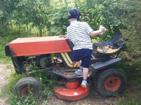 Hollow Trees Farm Shop: enjoying the tractors