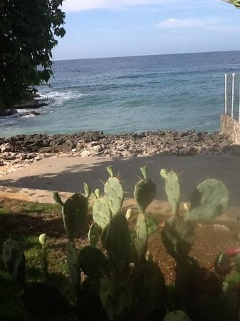 Westender Inn: view from Cactus suite