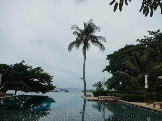 Starlight Resort: piscine