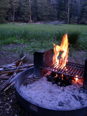 Azalea Campground: campfire in the fire pit