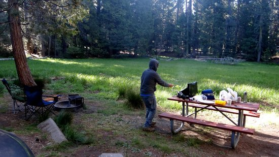 Azalea Campground: firepit and picnic table