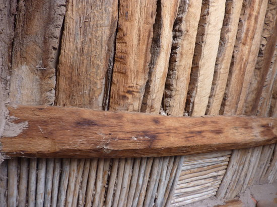The Oasis Museum: examples of different woods used for roofing