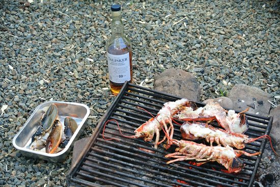 Trellyn Woodland Camping: Whisky and lobster evening!