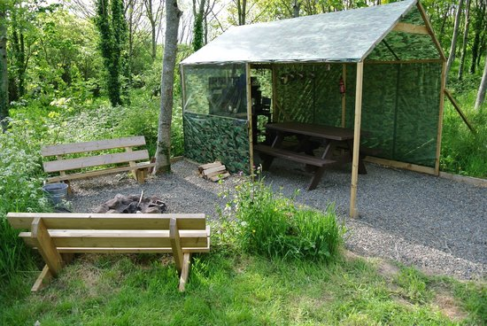 Trellyn Woodland Camping: dome from home kitchen and fire area
