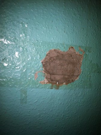 Cowgate Tourist Hostel: The hole in the wall above my bed...