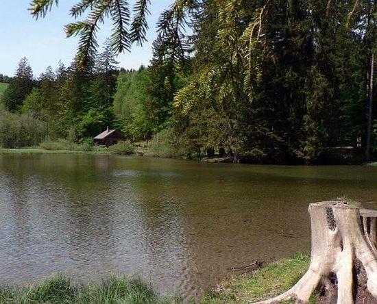 Altmunster, Austria: Taferlklaussee