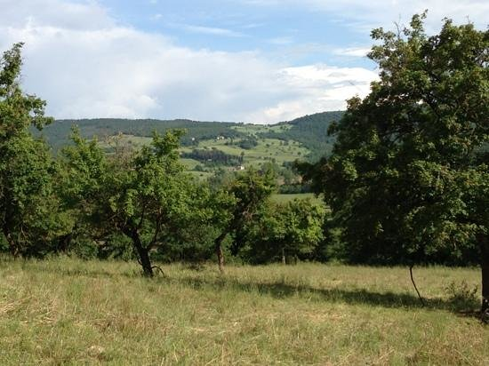 Agritur de Charme Villa Stampa: Inserisci didascalia