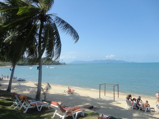 Samui Palm Beach Resort & Hotel: plage