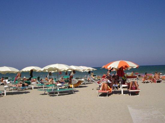 Hotel Stella D'Italia: mare di Romagna : grande spiaggia di sabbia fine e bel mare
