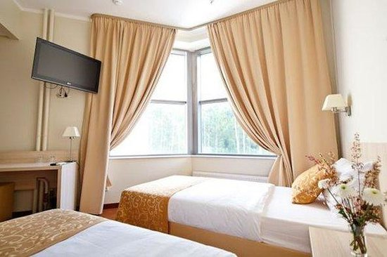 SkyPoint Sheremetyevo Hotel: Standard Twin Room