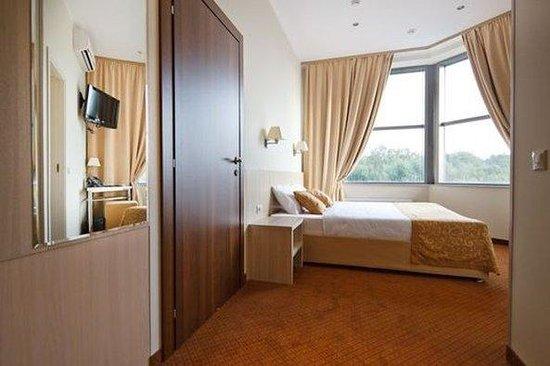 SkyPoint Sheremetyevo Hotel: Standard Double Room
