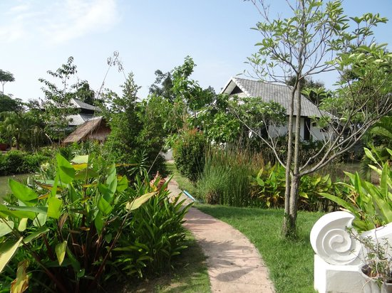 Baan Chai Thung: Gartenansicht