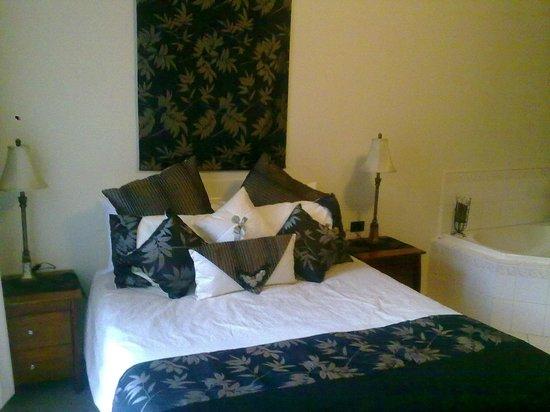 Albury Classic Motor Inn: spa room 1