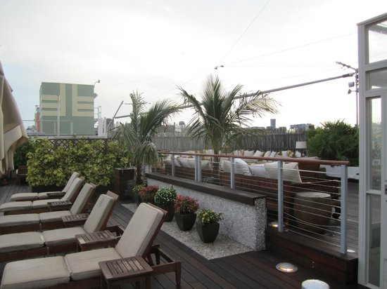 The Betsy - South Beach: Roof top deck