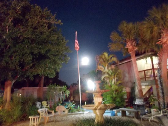 Sea Star Motel & Apts.: Sea Star Motel courtyard at night with full moon