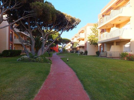 Aparthotel las Dunas: Jardins