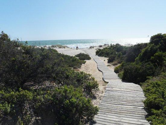 Playa de la Barrosa: Camino de acceso
