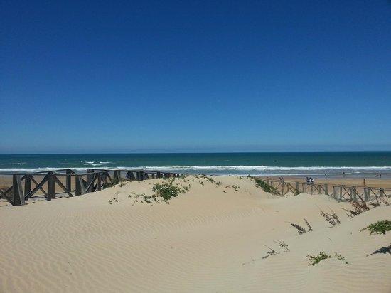 Playa de la Barrosa: Vista desde Novo Sancti Petri