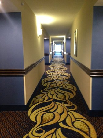 BEST WESTERN PLUS Columbia North East : 3rd floor hallway