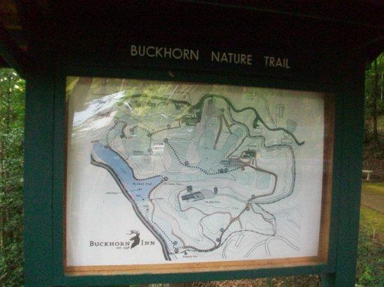 Buckhorn Inn: A map of the grounds