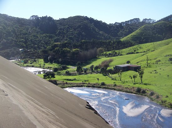 Waitakere Tours - Day Tours: Sand Dunes