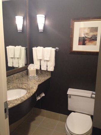 Hilton Garden Inn Austin Downtown/Convention Center: bathroom