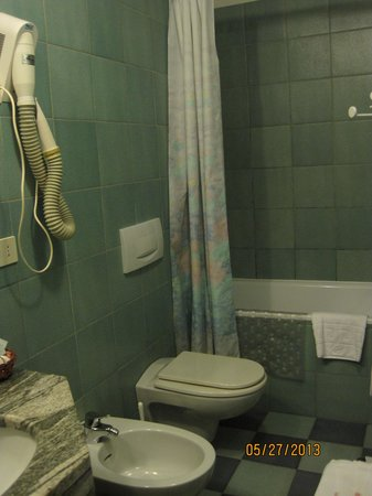 Hotel Albion : Spacious bathroom
