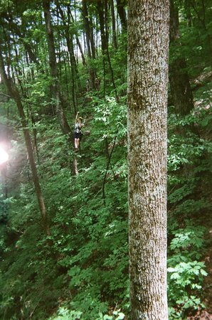 The Blue Ridge Canopy Adventure