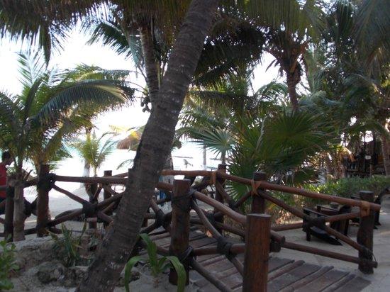 Beachfront La Palapa Hotel Adult Oriented: Walkway to the beach area.