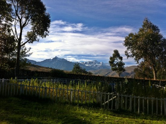The Lazy Dog Inn: View from the terrace