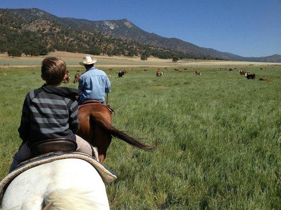 Rankin Ranch: Trail riding