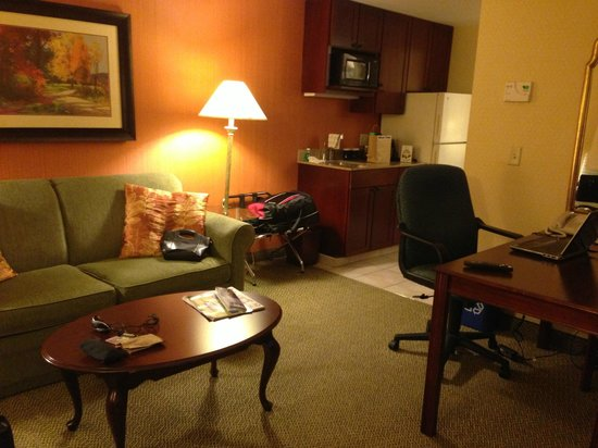 DoubleTree by Hilton Hotel Burlington: Living