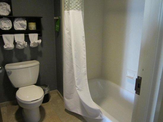 Hampton Inn & Suites Vineland : bathroom