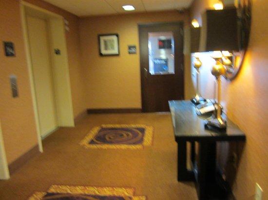 Hampton Inn & Suites Vineland: elevator area