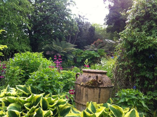 Ascog Hall Fernery and Garden: The pond in the gardens